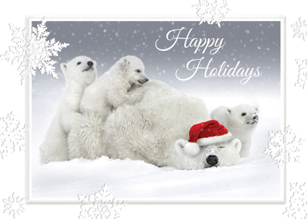 Polar Playtime Holiday Greeting Card